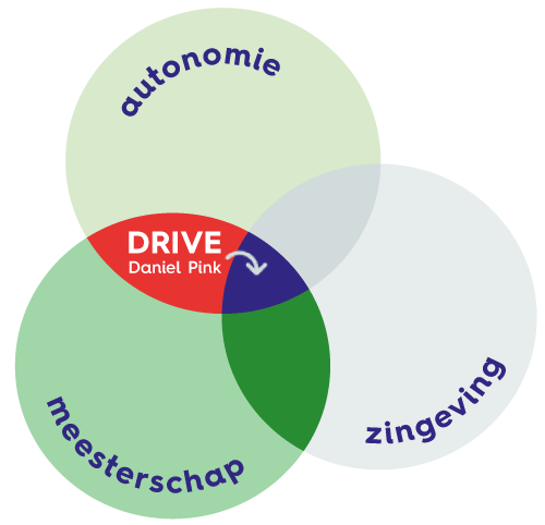 zelforganisatie en zelfsturing in het onderwijs met intrinsieke motivatie