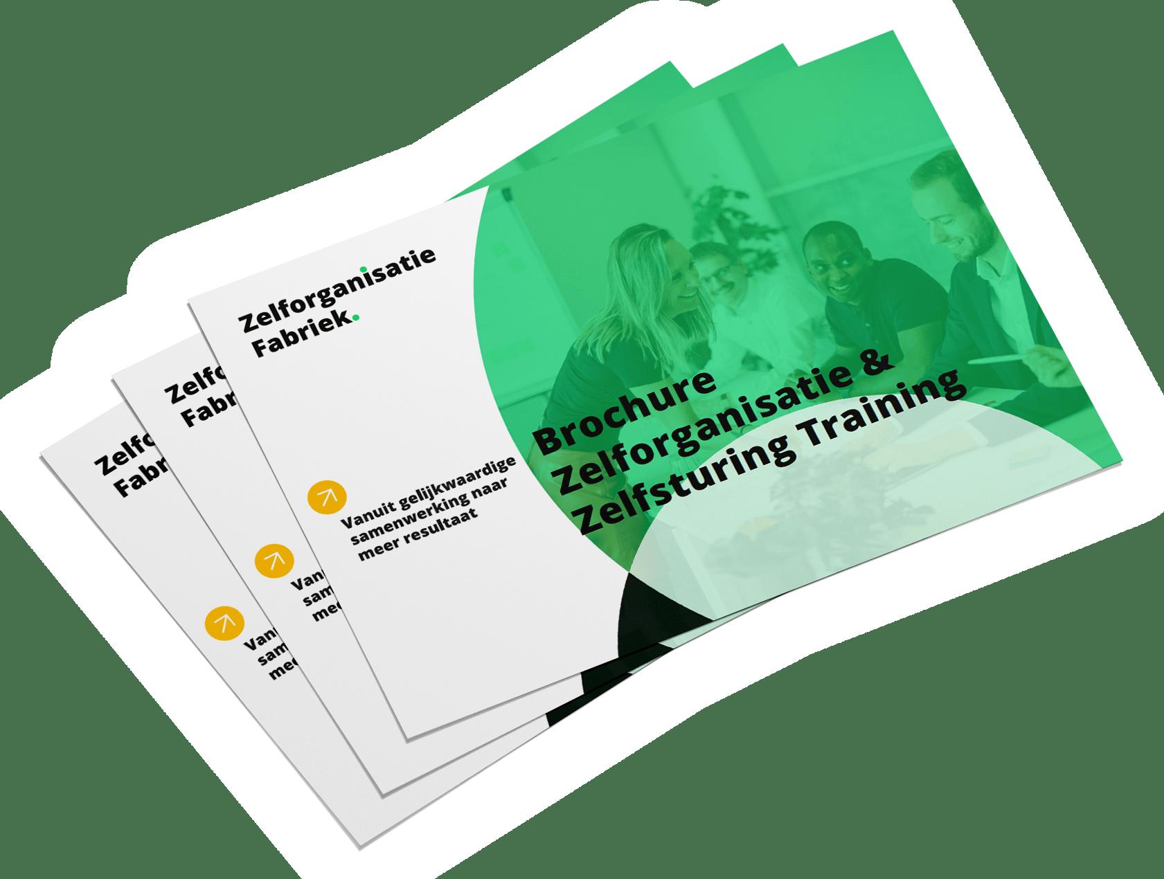 Zelfsturing-Zelforganisatie-trainingsbrochure